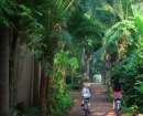 walkway_at_evavson_hua_hin_3759-a4